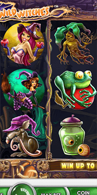 Wild Witches slot netent long