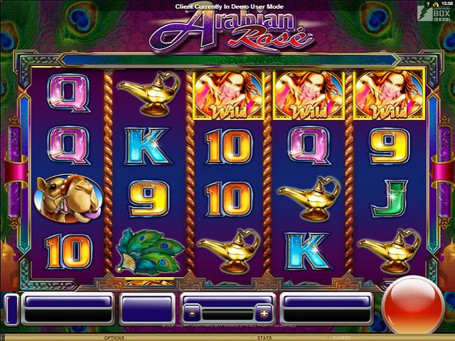 Arabian Rose Microgaming jocuri slot screenshot