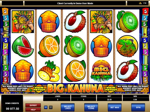Big Kahuna Microgaming jocuri slot screenshot