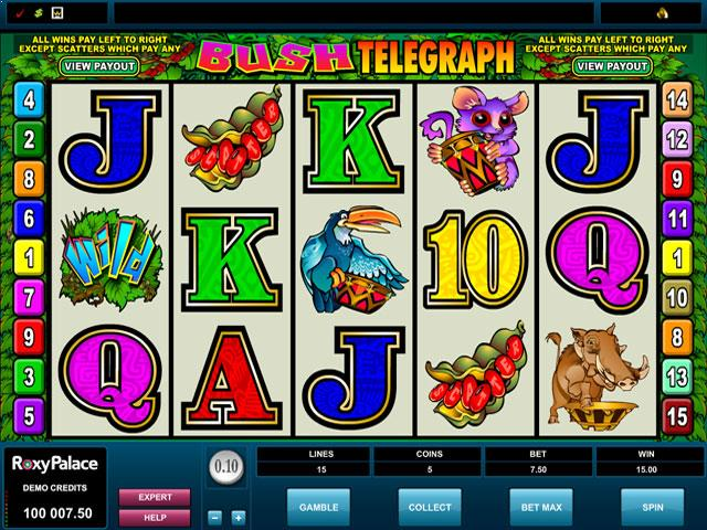 Bush Telegraph Microgaming jocuri slot screenshot