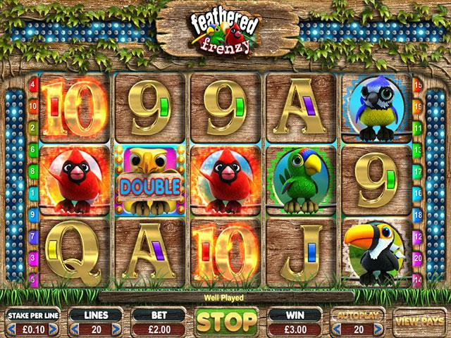Feathered Frenzy microgaming jocuri slot screenshot