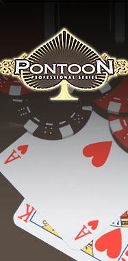 Pontoon Professional Series Standard Limit Microgaming thumbnail